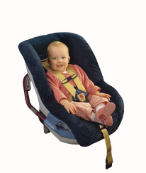 Fisher Price Car Seat Recall